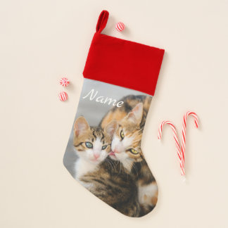 Chaussette De Noël Le chat de mère aime la photo mignonne d'animal
