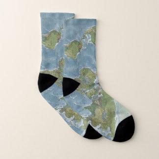 Chaussettes de carte du monde