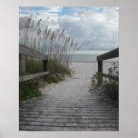 Chemin de plage de la Floride Posters