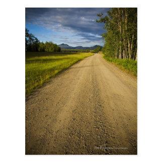 Chemin de terre dans Eagle, Alaska Cartes Postales