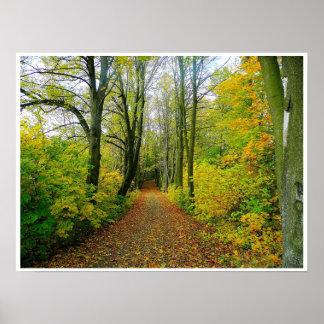 chemin en bois à travers l'affiche d'arbres de poster