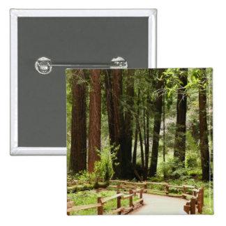 Chemin I en bois de Muir Badge