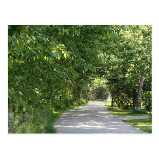 Chemin parmi la carte postale d'arbres