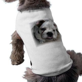 Chemise anglaise de chien de bouledogue t-shirt pour chien
