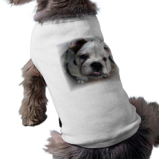 Chemise anglaise de chien de bouledogue t-shirt pour animal domestique