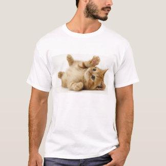 Chemise de chat t-shirt