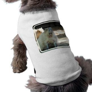 Chemise drôle d'animal familier de Capybara T-shirt Pour Chien