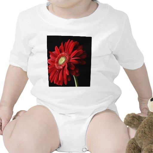 Chemise rouge de bébé de marguerite de Gerber Body Pour Bébé