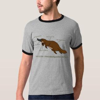 Chemise stupéfiante de l'ornithorynque des hommes t-shirt