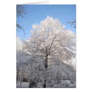 Chêne de Milou Cartes De Vœux