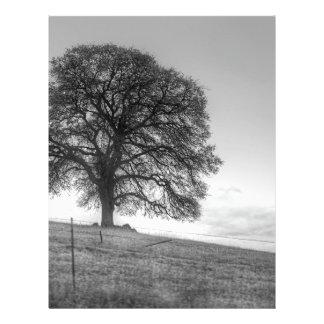 Chêne sur une colline prospectus personnalisés