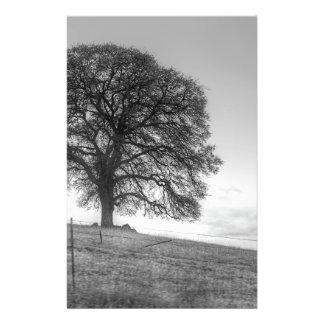 Chêne sur une colline tract customisé