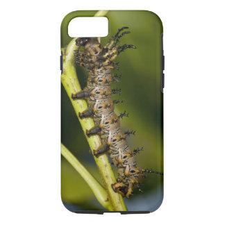 Chenille à cornes de diable d'hickory (Citheronia Coque iPhone 8/7