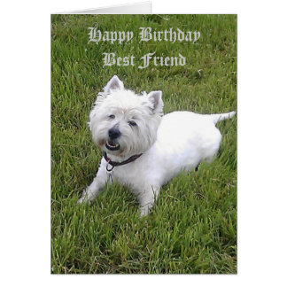 Cher ami de joyeux anniversaire carte de vœux