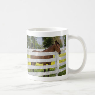Cheval attendant par la barrière mug