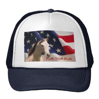 Cheval avec le casquette de drapeau américain