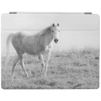 Cheval blanc monochrome protection iPad