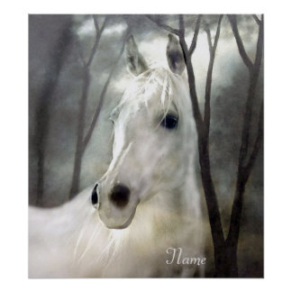 Cheval blanc poster