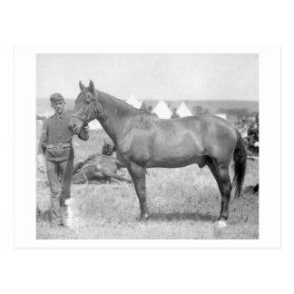"""Cheval """"Comanche"""" le seul survivant du Custer Carte Postale"""