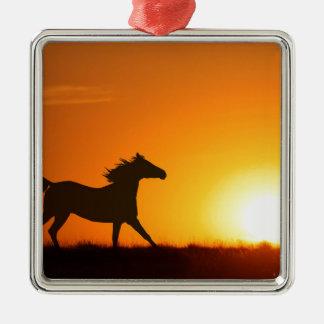 Cheval courant au coucher du soleil ornement carré argenté