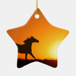 Cheval courant au coucher du soleil ornement étoile en céramique