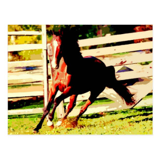 Cheval courant carte postale