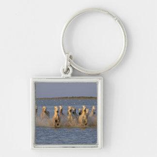 Cheval de Camargue (caballus d'Equus) Porte-clé Carré Argenté