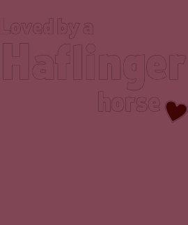 Cheval de Haflinger