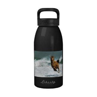 Cheval de l'eau bouteilles d'eau réutilisables