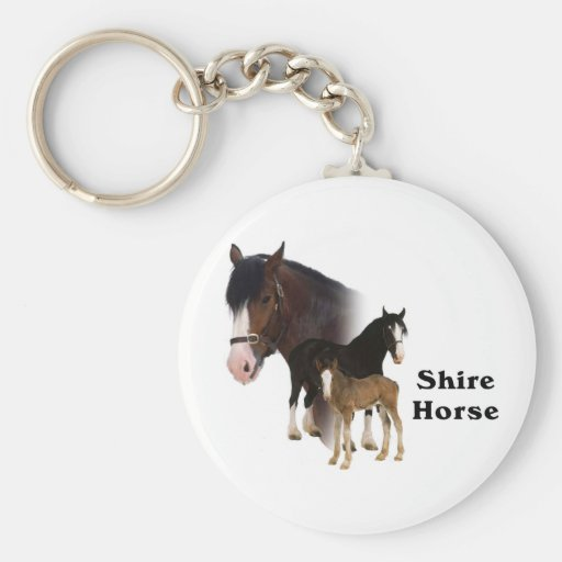 Cheval de Shire Porte-clef