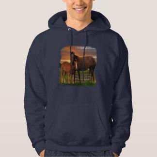 cheval et poney veste à capuche