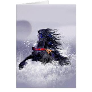 Cheval indien d'étalon majestueux bleu noir dans carte de vœux
