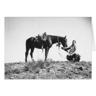 Cheval mangeant d'un casquette de cowboy carte de vœux