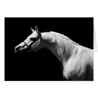 Cheval noir et blanc carte de vœux