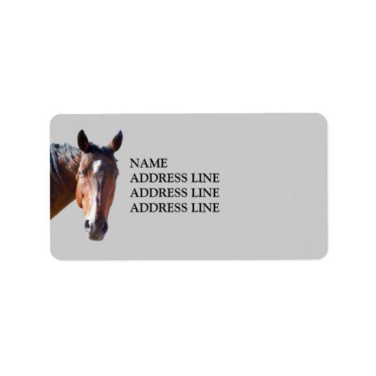 Cheval quart américain - adresse de retour étiquette d'adresse