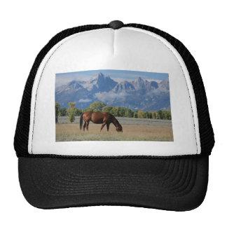 Cheval, ranch du Wyoming Casquettes De Camionneur