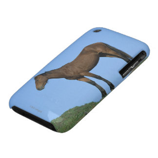 Cheval sauvage de mustang coques iPhone 3