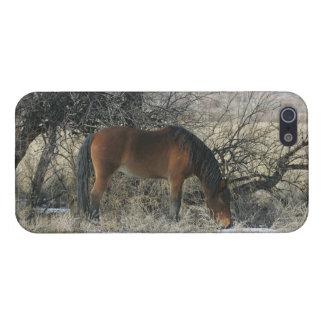 Cheval sauvage de mustang dans la neige 1 étui iPhone 5
