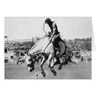 Cheval s'opposant d'équitation d'homme dans le cartes