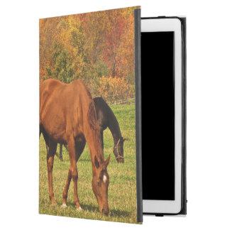 Chevaux dans cas d'iPad d'automne le pro