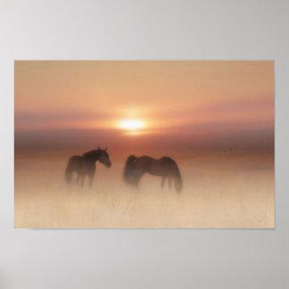 Chevaux dans une aube brumeuse poster
