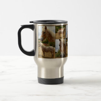 Chevaux d'Appaloosa, tasse de banlieusard de