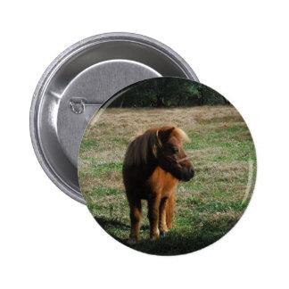 Chevaux de miniature de Brown Badges