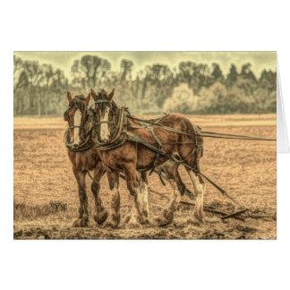 Chevaux de trait primitifs d'animal de ferme de cartes