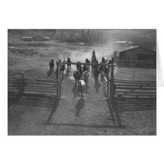 Chevaux entrant dans un corral carte de vœux
