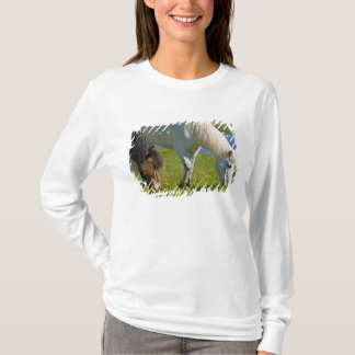 Chevaux islandais en Islande occidental T-shirt