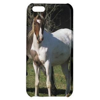 Chevaux sauvages 1 de mustang étui iPhone 5C