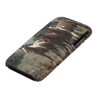 Chevaux sauvages 7 de mustang coque iPhone 3