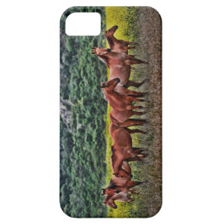 Chevaux sauvages coque iPhone 5 Case-Mate