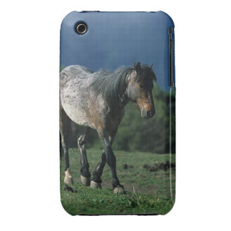 Chevaux sauvages de mustang coque iPhone 3